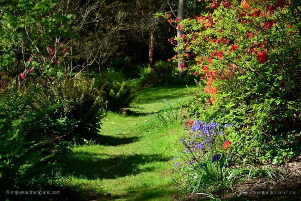 Impressionen vom Subtropical Garden in Abbotsbury