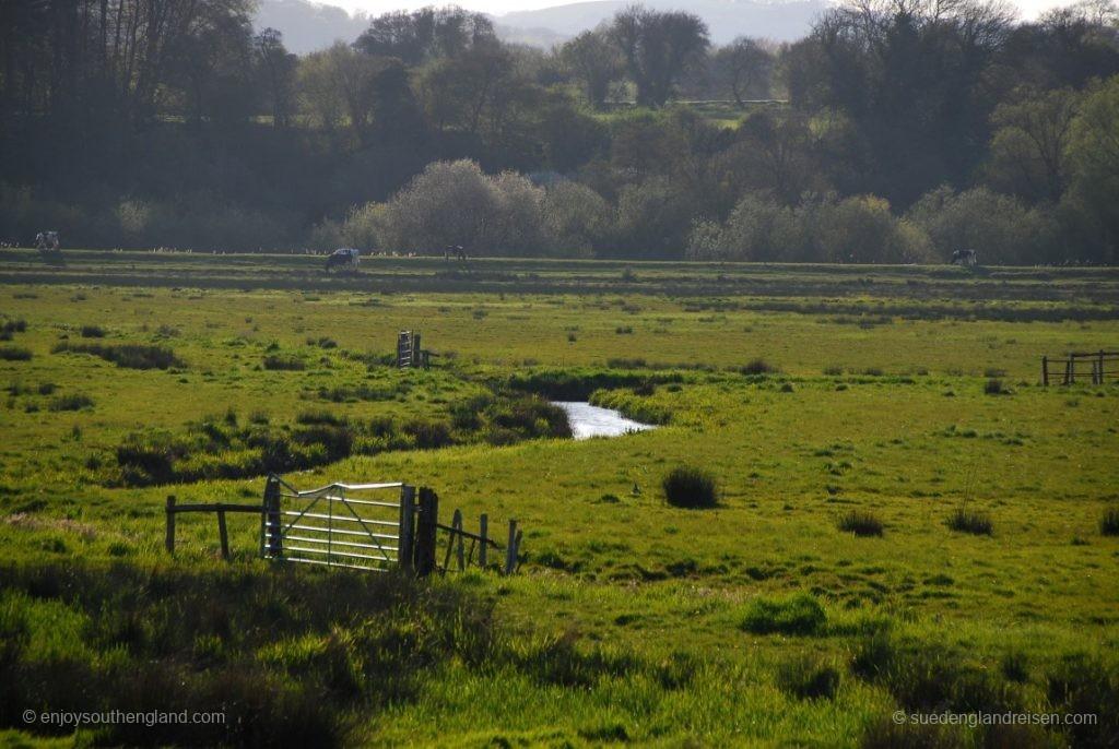 Direkt angrenzend an Amberley liegen die Überschwemmungswiesen des River Arun
