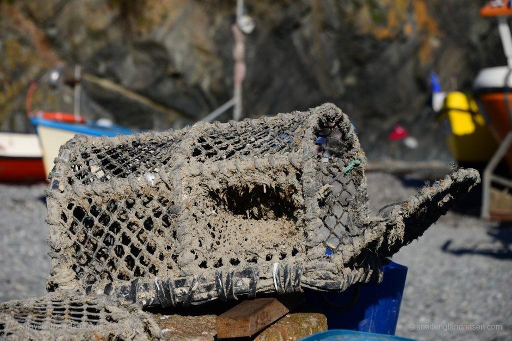 Reuse im Hafen von Cadgwith (Cornwall)