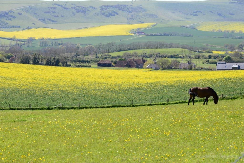 Das Cuckmere Valley in East Sussex