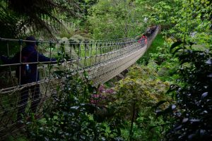Lost Gardens of Heligan (Cornwall)
