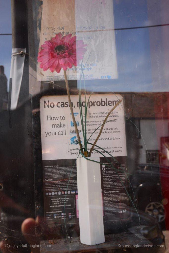 Die Telefonzelle beinhaltet heute einfach nur eine Blumenvase mit Inhalt!