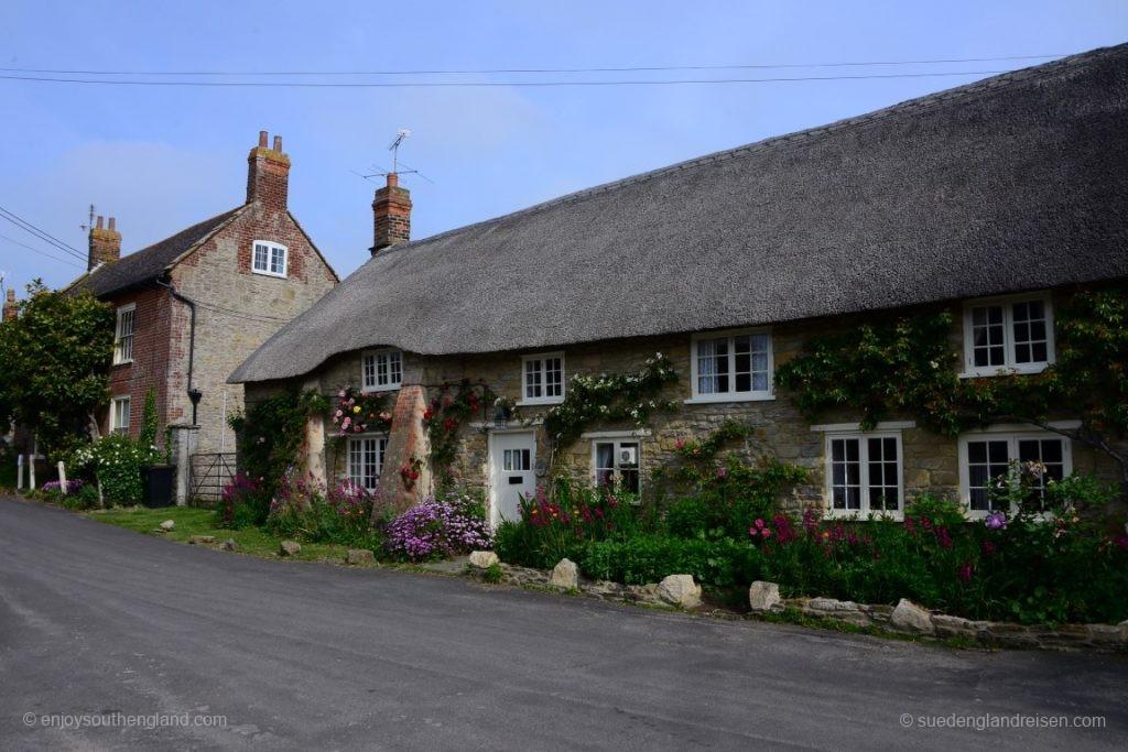 Häuser in Burton Bradstock - am hinteren Haus die beiden Bäume sind übrigens Magnolien (die der neue Besitzer fällen lassen will)