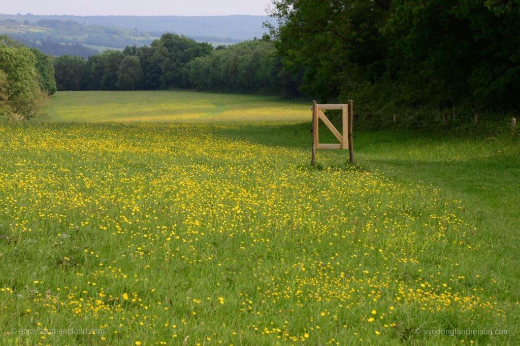Sehr abwechslungsreich der wunderschöne Weg. Manchmal sind auch Tore da, die man gerade nicht wirklich braucht.