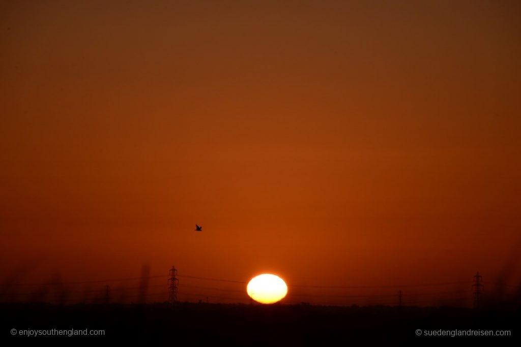 Sonnenaufgang über der Romney Marsh
