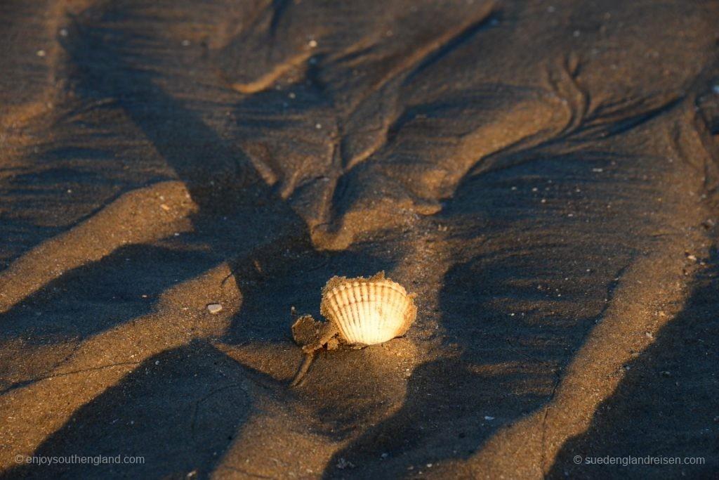 DIe ersten warmen Sonnenstraglen erreichen den Strand