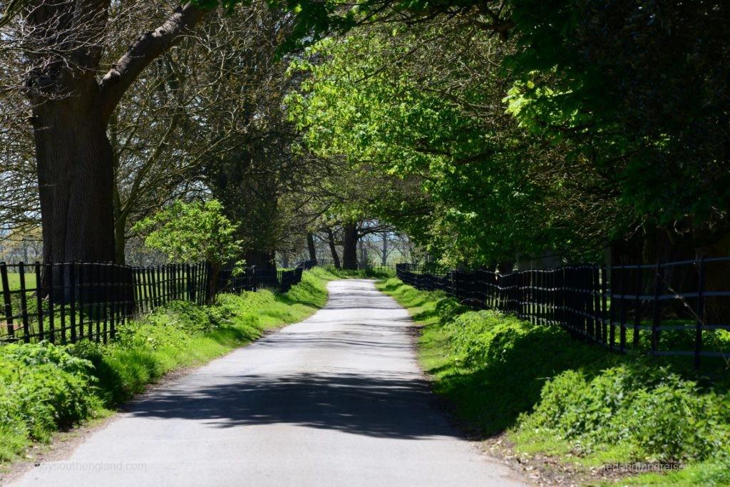 Straße in Winchelsea - hier war übrigens vor einugen hundert Jahren städtische Bebauung!