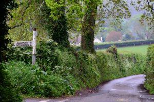 im Exmoor (Devon / Somerset)