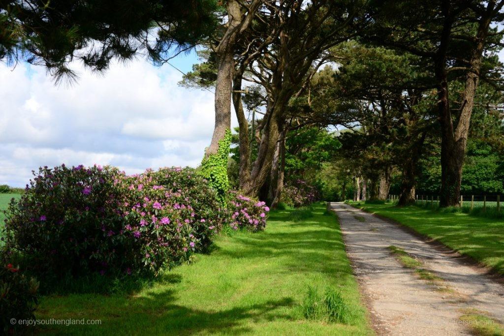 Zufahrtsweg zur Bodrean Manor Farm