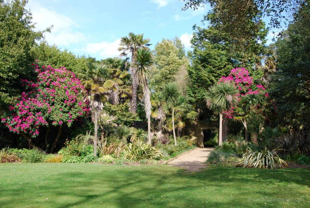 Subtropical Garden in Abbotsbury