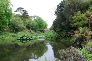 Trebah Garden (Cornwall)