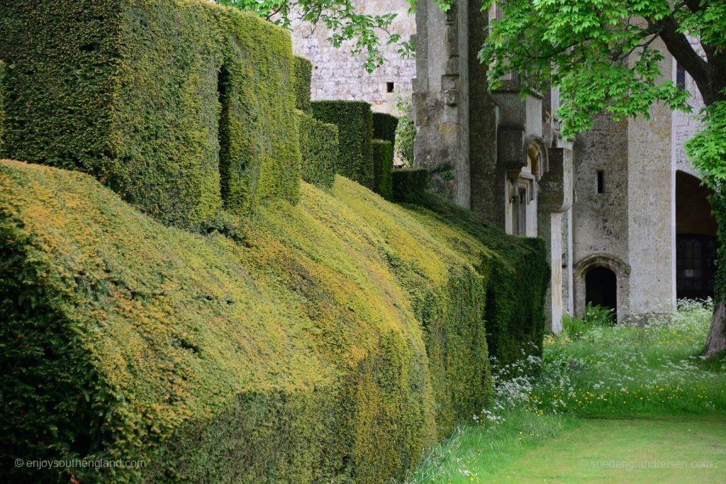 Sudeley Castle - geschnittene Hecken konstratieren mit alten Mauern