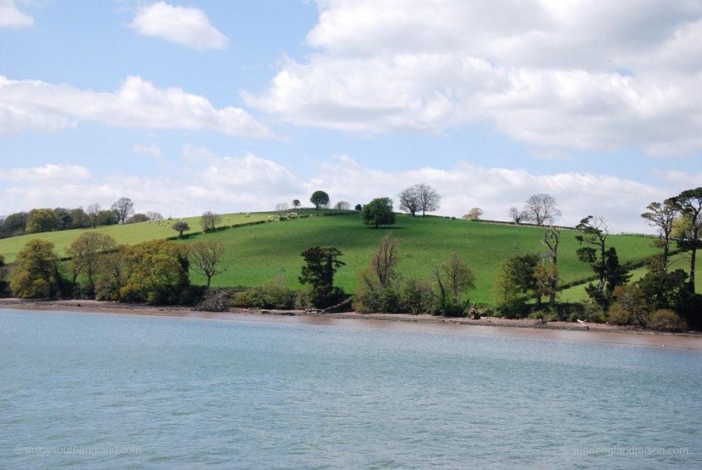 und wieder viel Landschaft entlang des River Dart auf unserem Weg nach Totnes