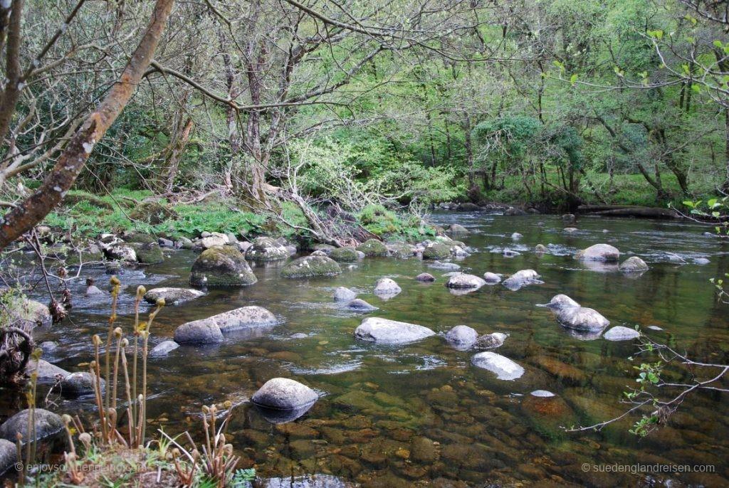 im Dartmoor