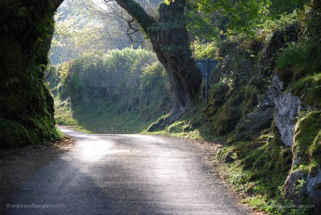 unterwegs im Dartmoor