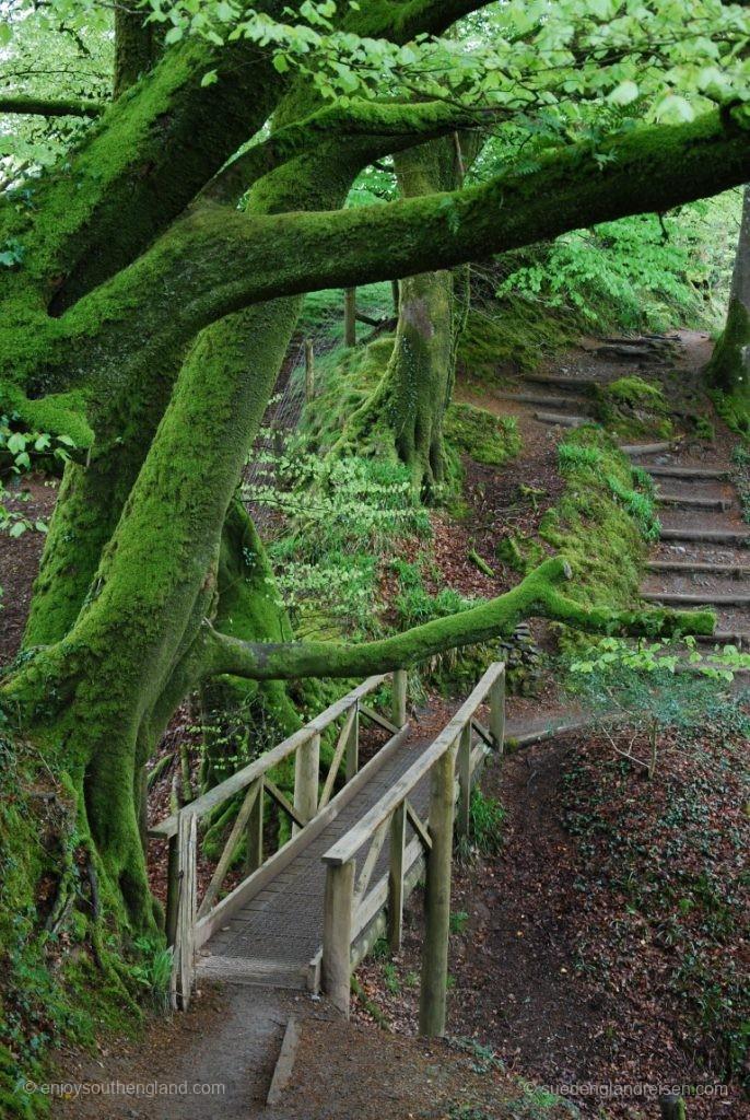 Auf Treppen und schmalen Steigen geht es durch die Lydford Gorge