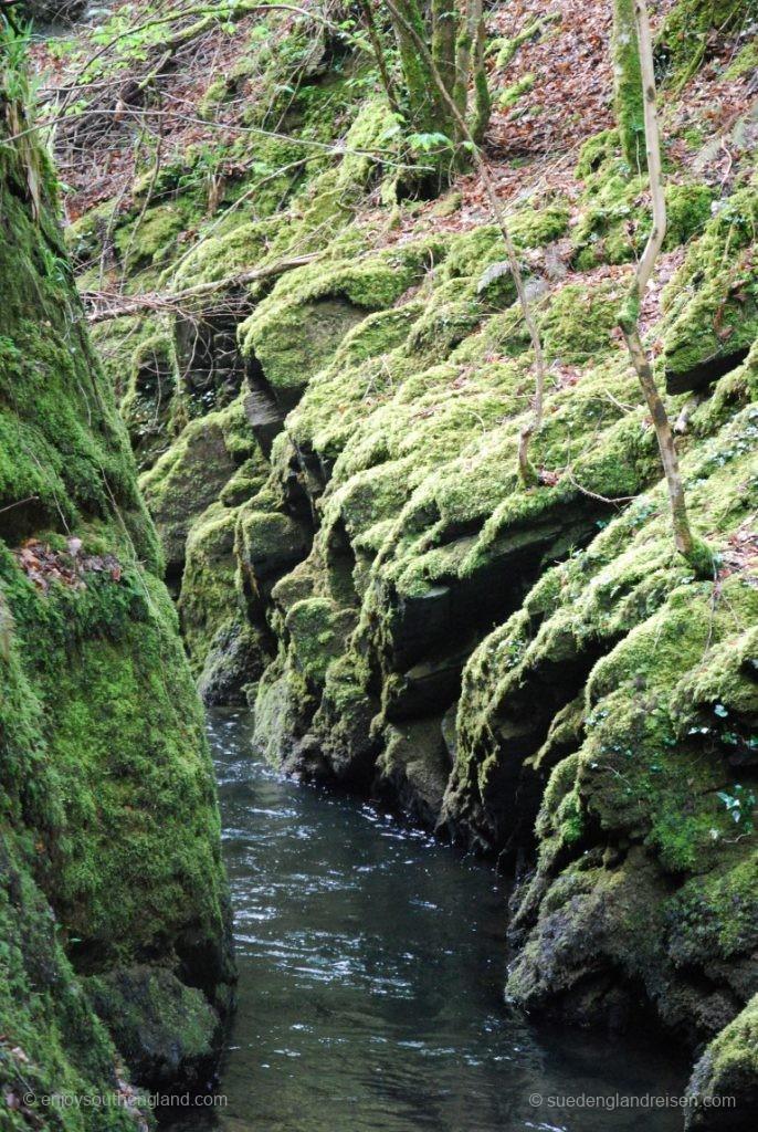 In der Lydford Gorge