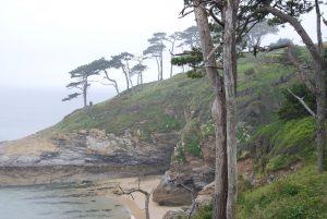 Roseland Peninsula in Cornwall
