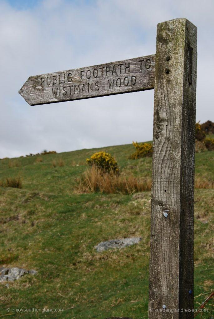Der Weg zum Whistman's Wood im Dartmoor