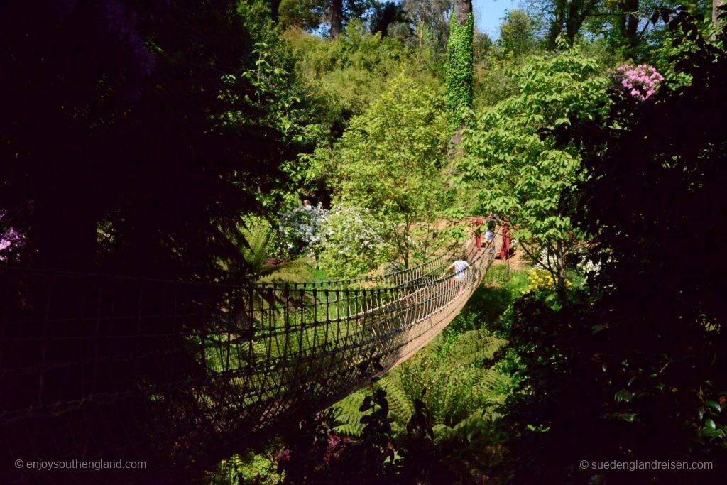 Die Brücke im Dschungel der Lost Gardens of Heligan
