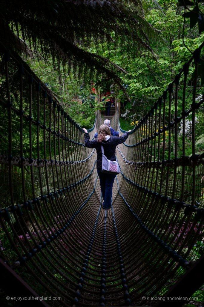 auf der Hängebrücke in den Lost Gardens of Heligan (Cornwall)