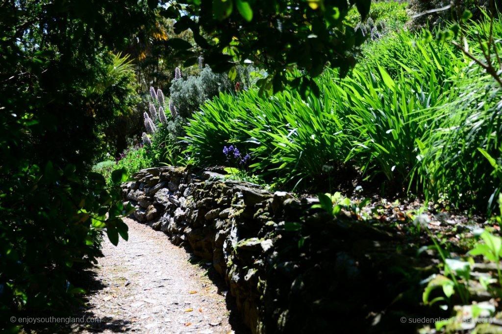Im Overbeck's Garden (Devon)