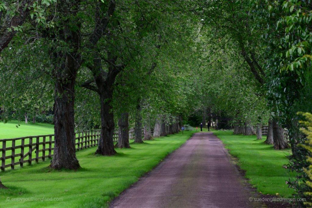 Die Zufahrt zu Cawdor Castle