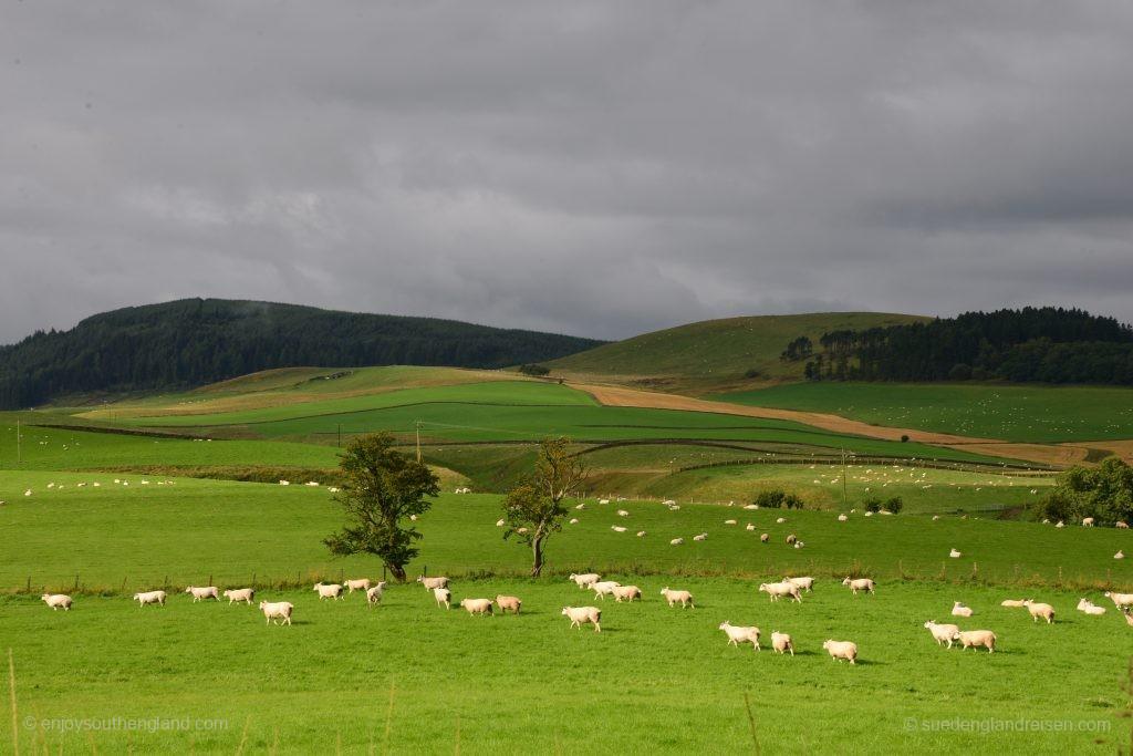 unterwegs im Süden Schottlands