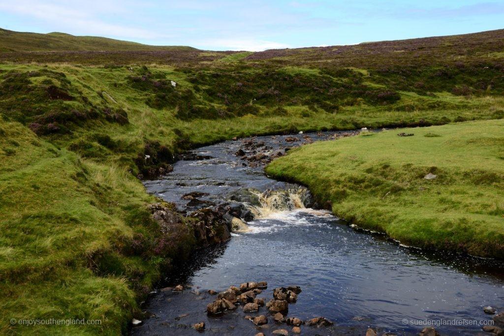 Moorlandschaft, immer wieder unterbrochen von Flüssen mit torfigem Wasser