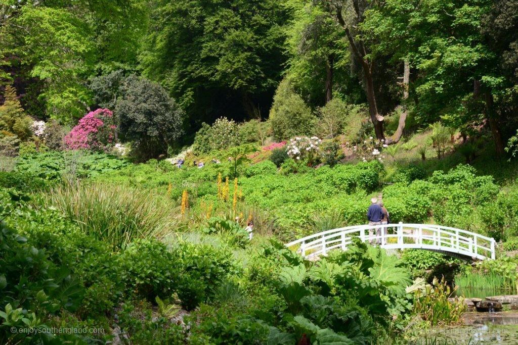 Blick in den Trebah Garden von unten