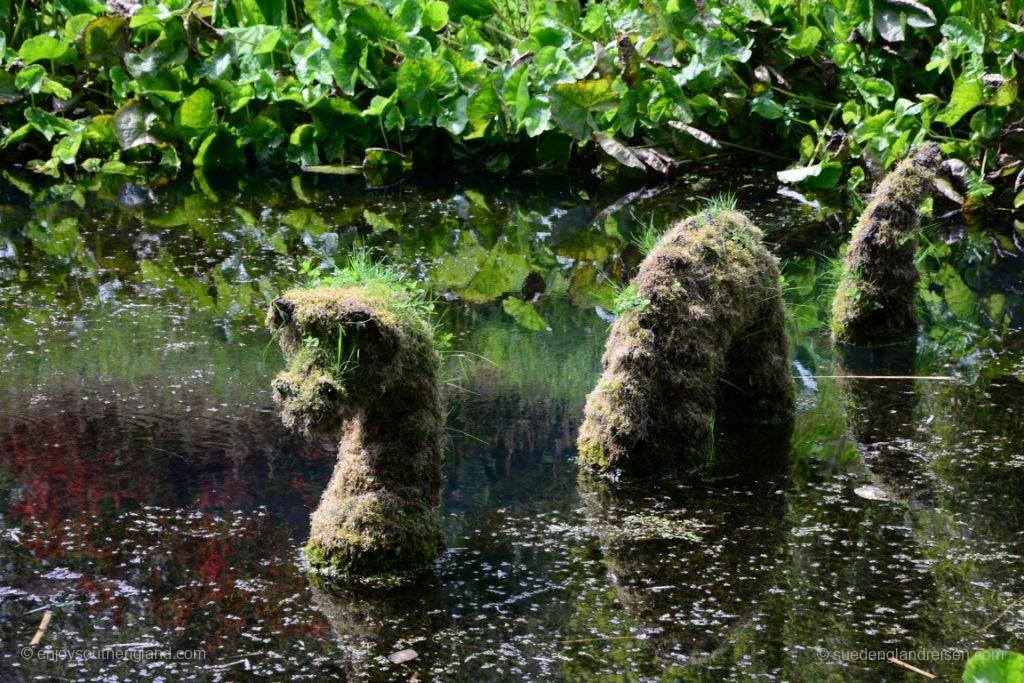 Im Jahr 2016 verbachte Nessie aus Schottland seinen Sommerurlaub im Trebah Garden in Cornwall