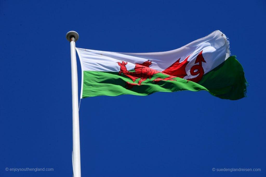 Die Fahne Wales: Der walisische Löwe auf weiß-grünem Untergrund