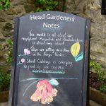 Bodnant Garden - die Infos vom Chefgärtner