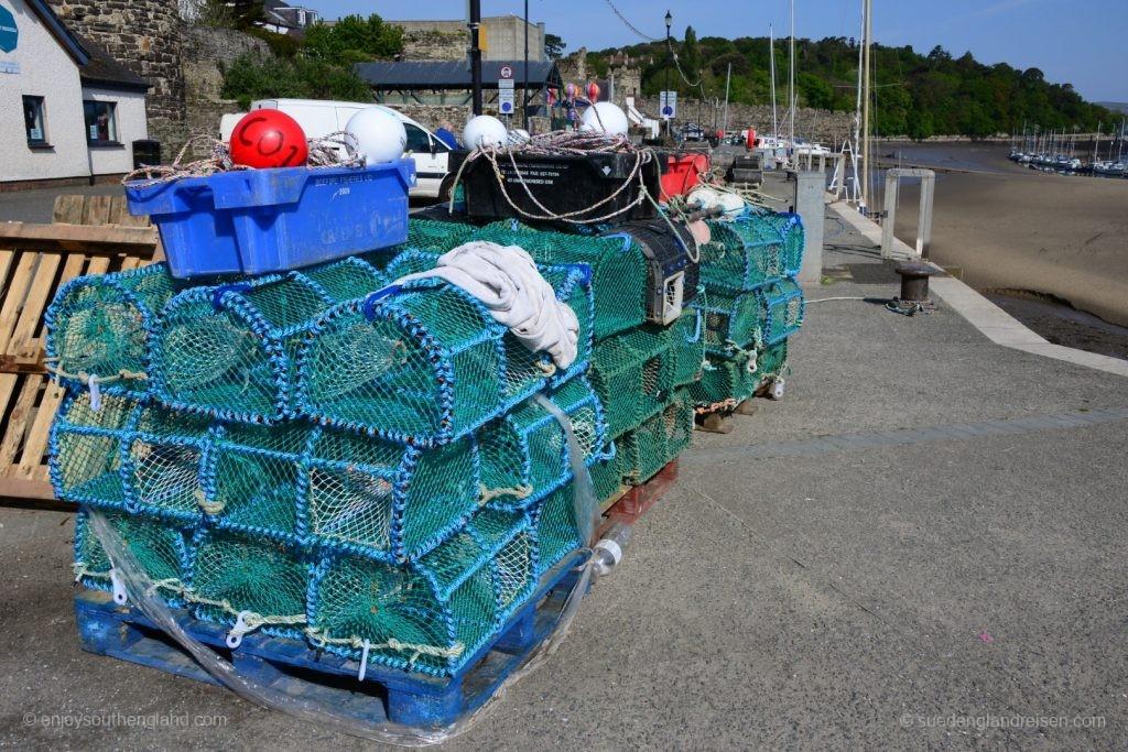 Am Hafen von Conwy