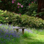 im Garten von Powis Castle