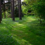 Hergest Croft Garden