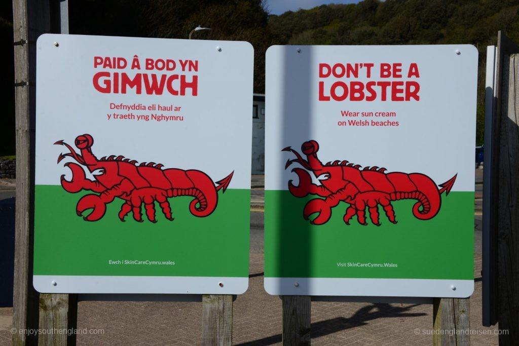 Warnung vor UV-Schäden am Strand von Caswell Bay
