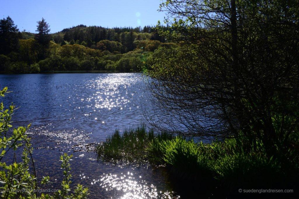 Der See Llyn Mair - unser Abendessenplatz