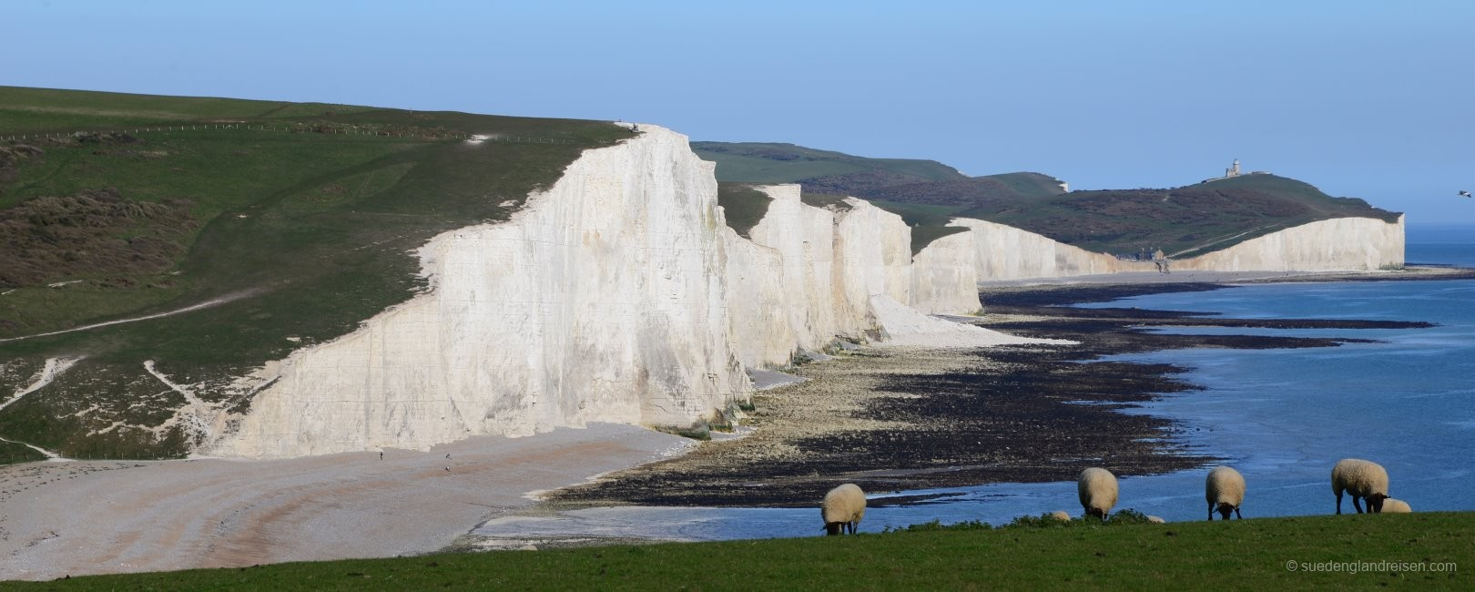 The white chalk cliffs of the Seven Sisters